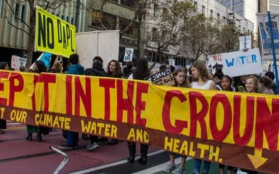 A Climate Constitution in the Courts and the Streets