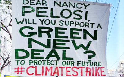 Some Tough Questions on the Green New Deal