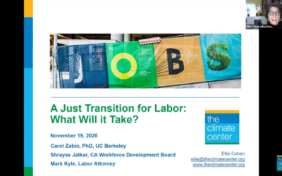 A Just Transition for Labor: What Will It Take?