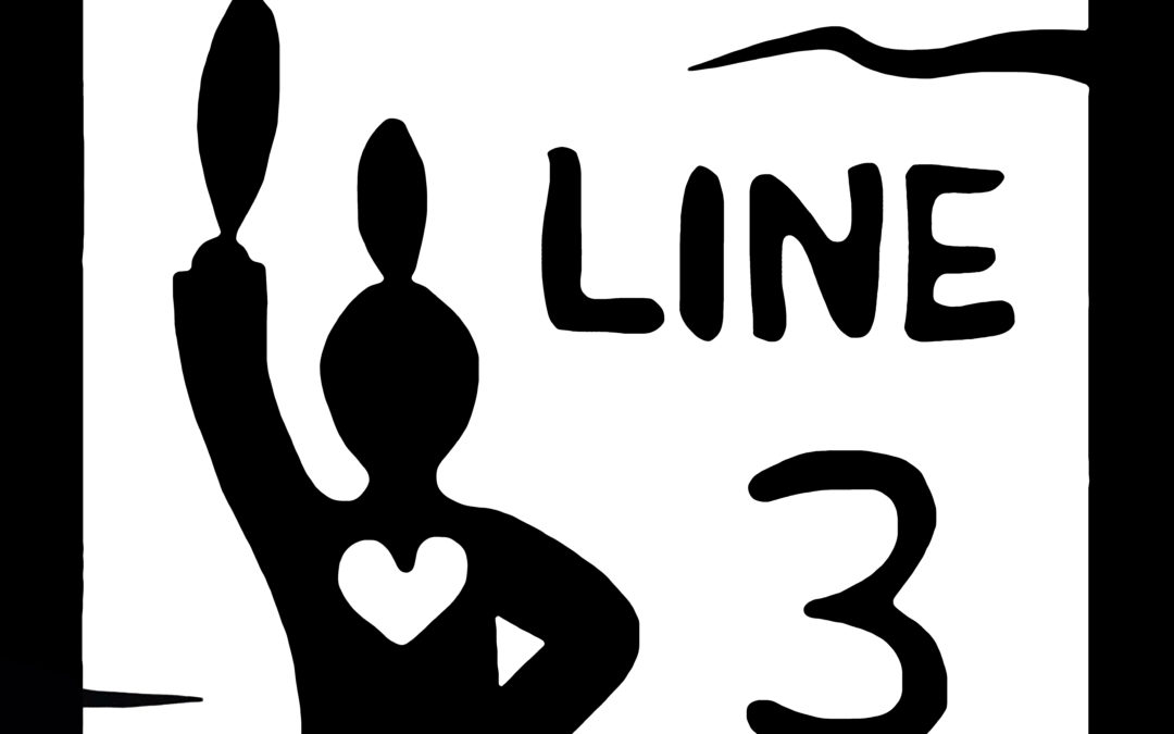 LNS Calls for Climate-Safe Infrastructure  Not Line 3 and Dakota Access Tar Sands Pipelines